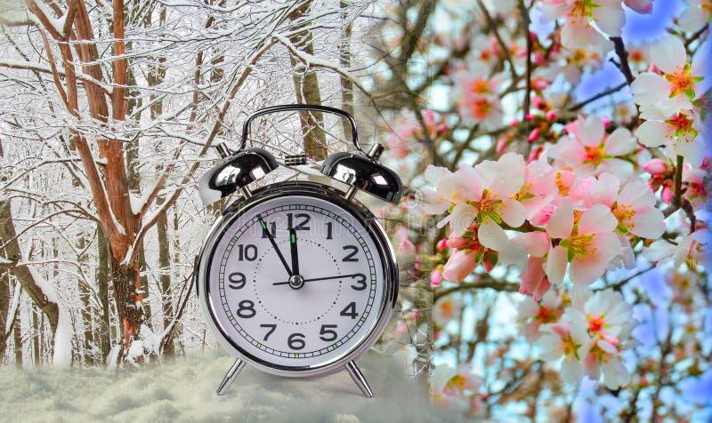 Blommor för mandel för snö för vintervårändring arkivbilder