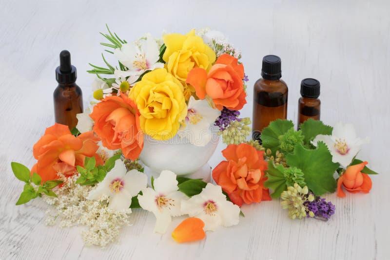 Blommor för nödvändiga oljor fotografering för bildbyråer