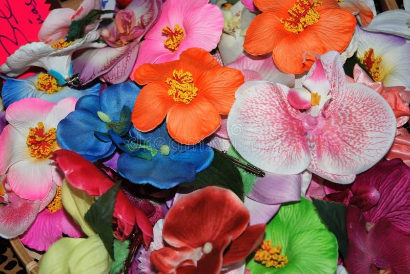 Blommor för stift ups arkivfoton