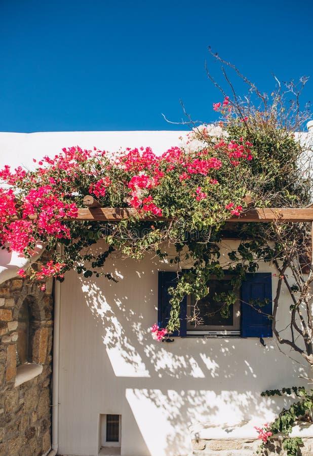 Blommor för trädgård för balkong för stenhushav rosa fotografering för bildbyråer