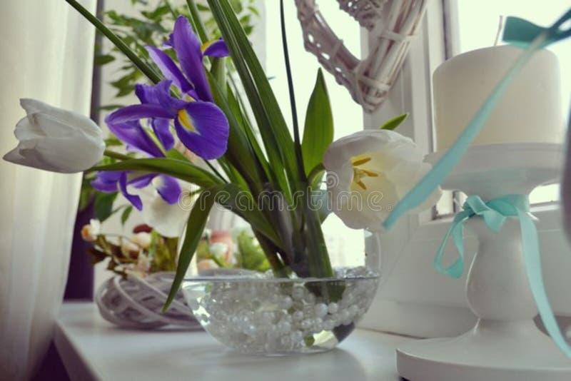 Blommor för vår för kvinna` s favorit- royaltyfri bild