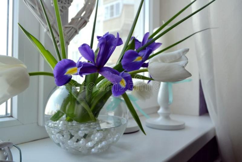 Blommor för vår för kvinna` s favorit- fotografering för bildbyråer
