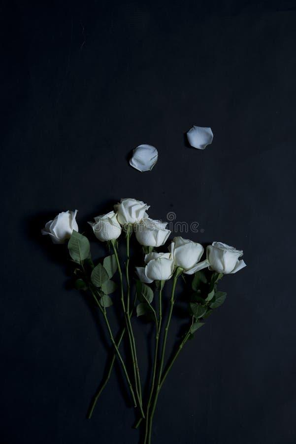 Blommor flyger royaltyfri fotografi