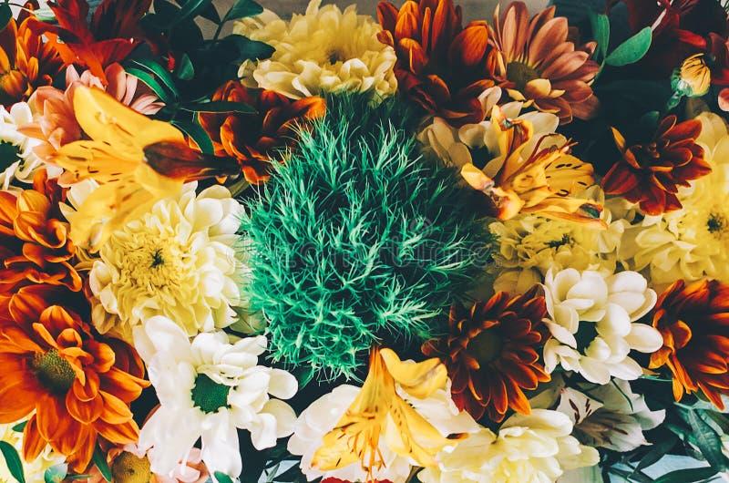 Blommor i ask royaltyfri foto