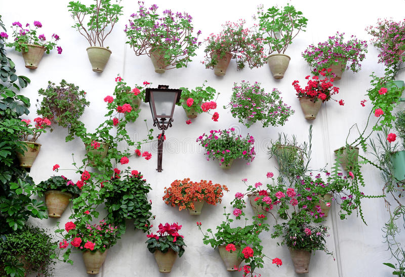 Blommor i blomkruka på väggarna på gator av Cordoba, Spanien royaltyfria foton