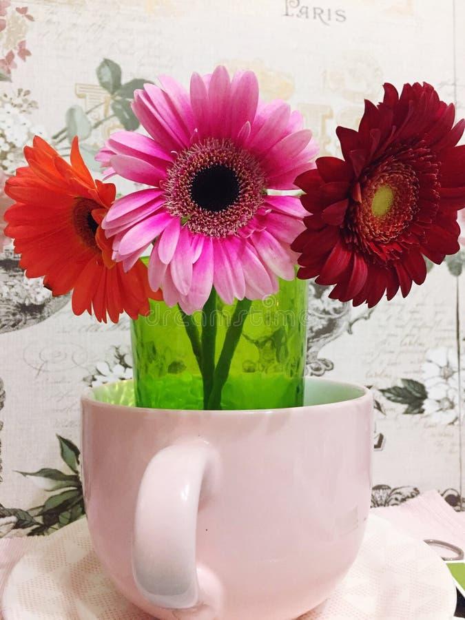 Blommor i bunke royaltyfri fotografi