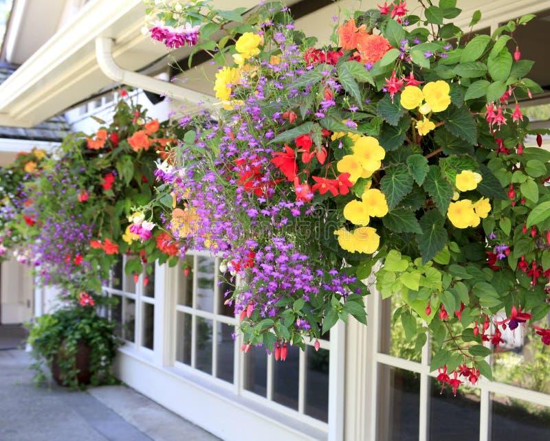 Blommor i de hängande korgarna med fönster. royaltyfri fotografi
