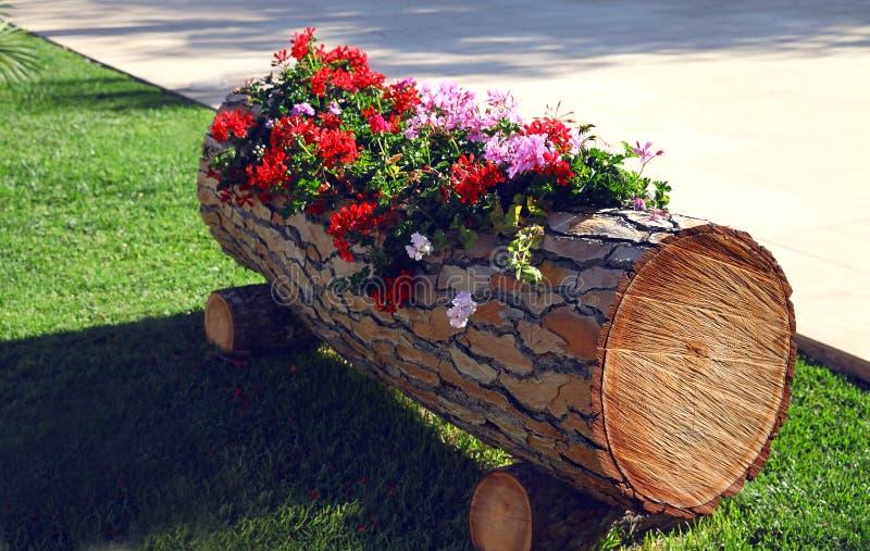 blommor i en trädekorativ ask på gatan royaltyfri foto