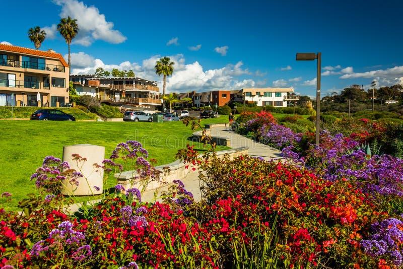 Blommor i en trädgård på Calafia parkerar royaltyfria foton