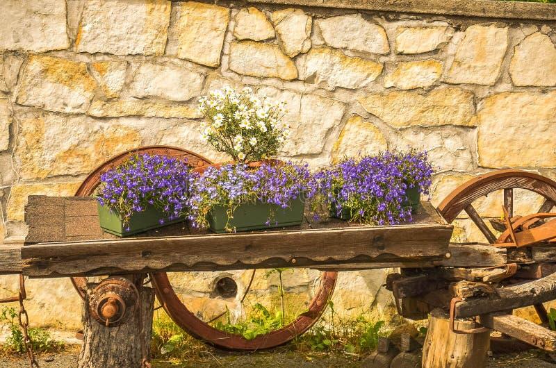 Blommor i en vagn royaltyfri bild