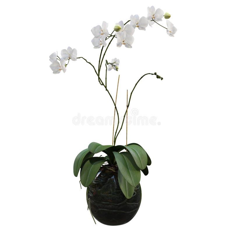 Blommor i krukar royaltyfri illustrationer