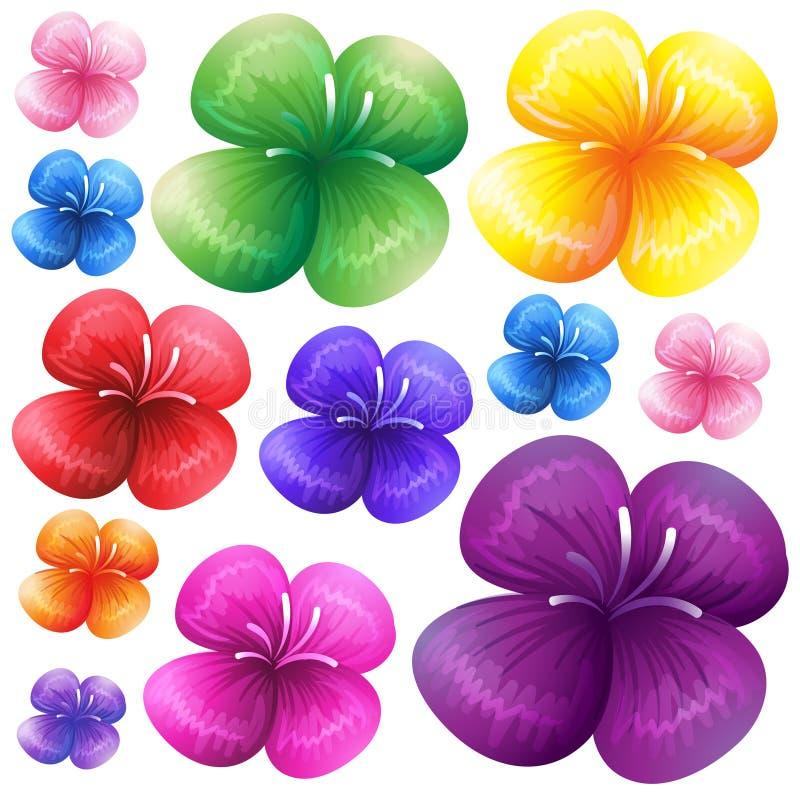 Blommor i olika färger vektor illustrationer