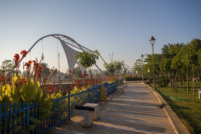 Blommor i regionalt parkerar i Indore Indien arkivbild