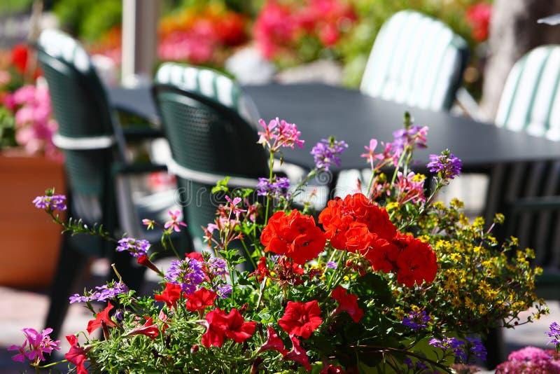 Blommor i restaurang i schweizisk by royaltyfri bild