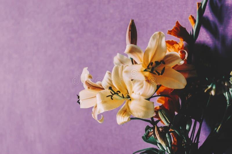 Blommor i rum arkivfoton
