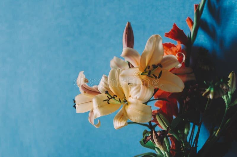 Blommor i rum arkivbild