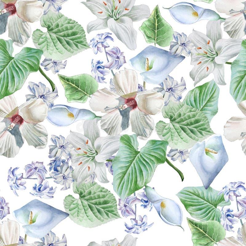 blommor mönsan seamless lilja calla hibiskus för flygillustration för näbb dekorativ bild dess paper stycksvalavattenfärg vektor illustrationer