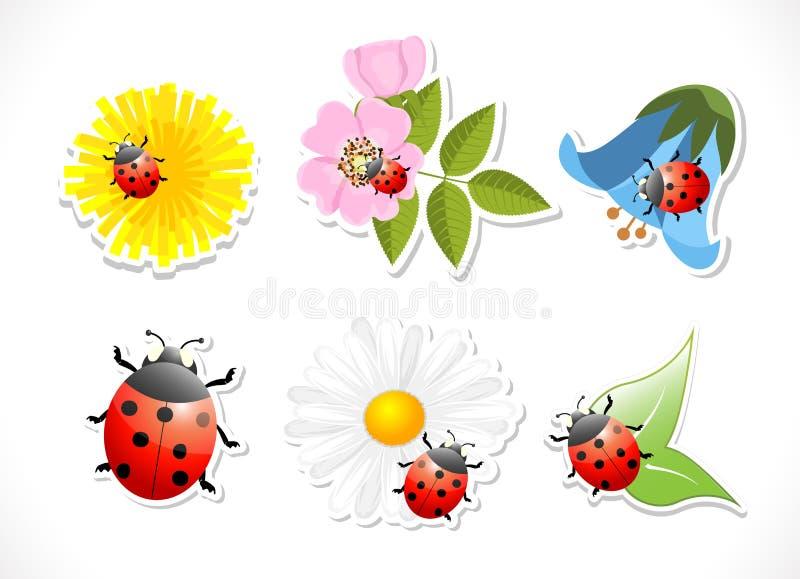 Blommor med nyckelpigan på vit bakgrund stock illustrationer