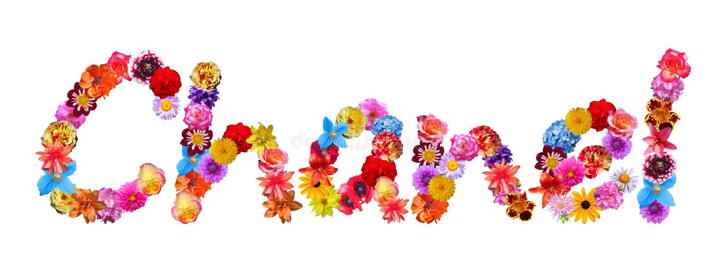Blommor namnger Chanel vektor illustrationer