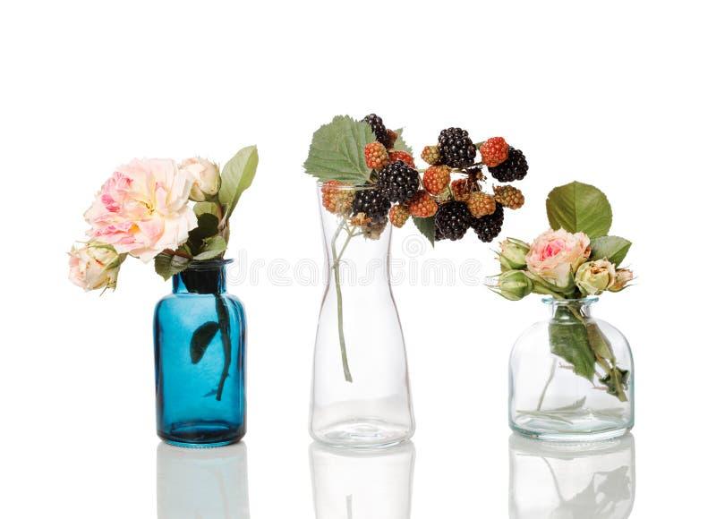 Blommor och örter i glasflaskor Abstrakta blommabuketter i flaskor som isoleras på vit royaltyfri bild