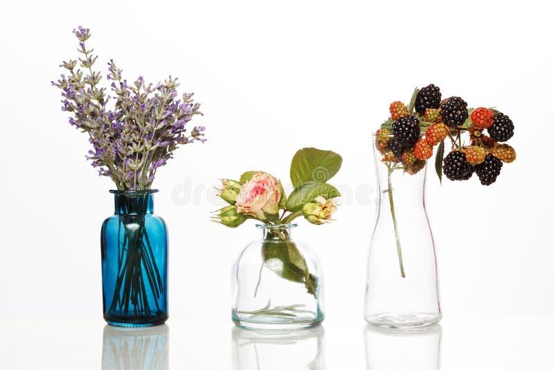 Blommor och örter i glasflaskor Abstrakta blommabuketter i flaskor som isoleras på vit royaltyfri foto
