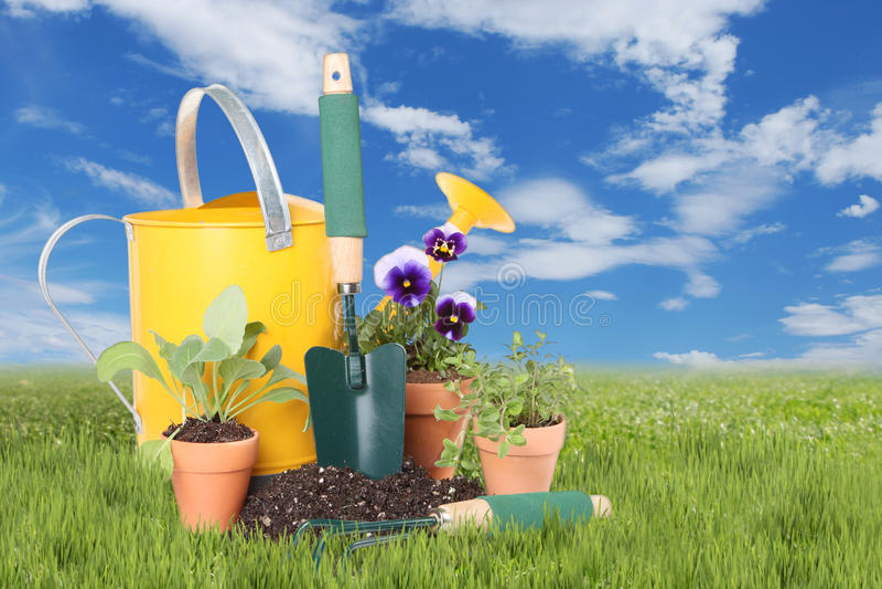 Blommor och örter som planteras i våren Tid royaltyfri fotografi
