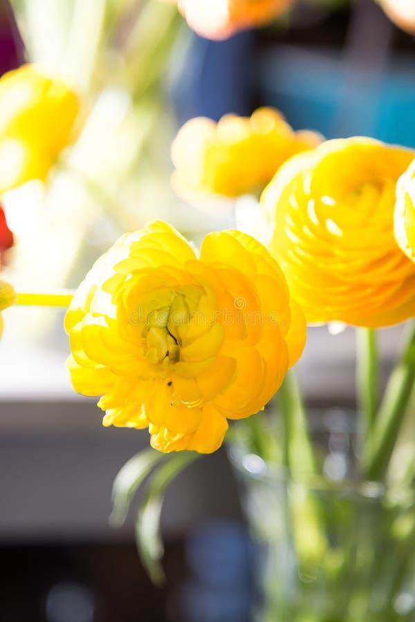Blommor och exponeringsglaskrus arkivbilder