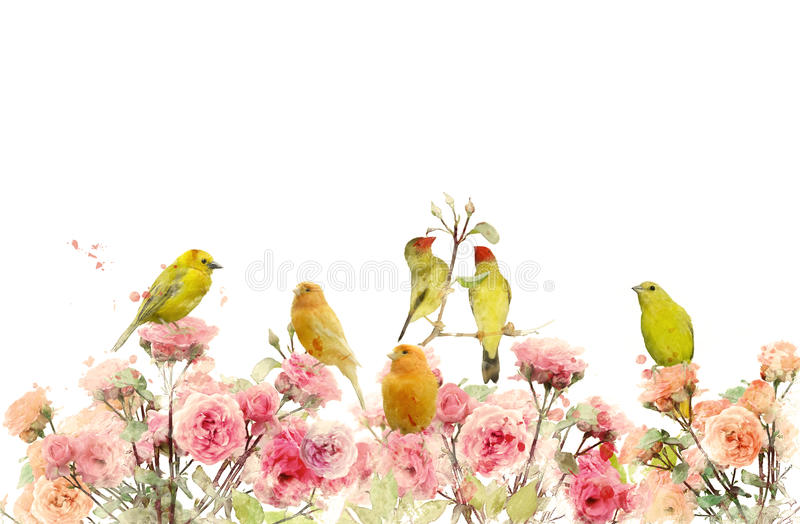 Blommor och fåglar vektor illustrationer
