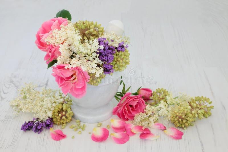 Blommor och Herb Natural Medicine fotografering för bildbyråer