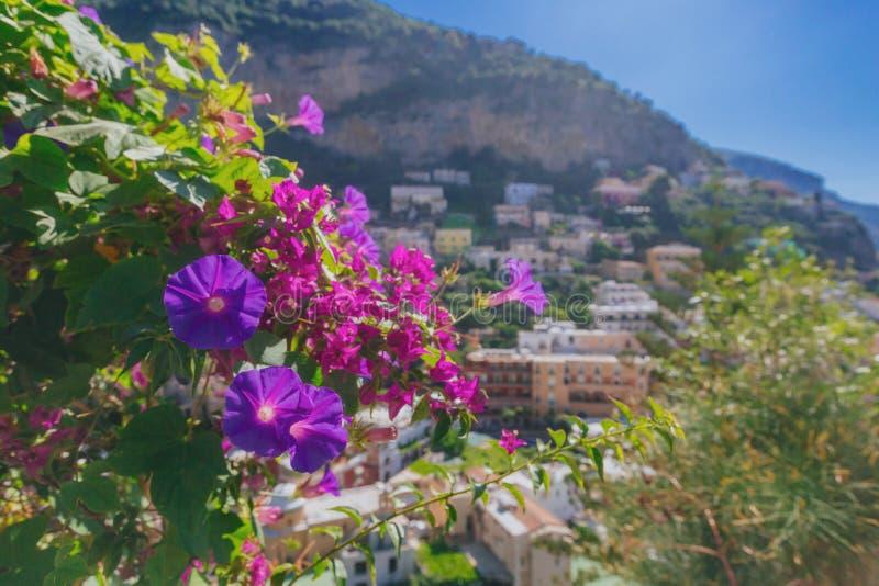 Blommor och hus på berg i staden av Positano, längs den Amalfi kusten, Italien fotografering för bildbyråer
