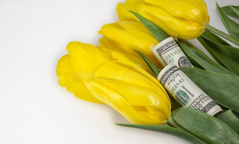 Blommor och pengar royaltyfria foton