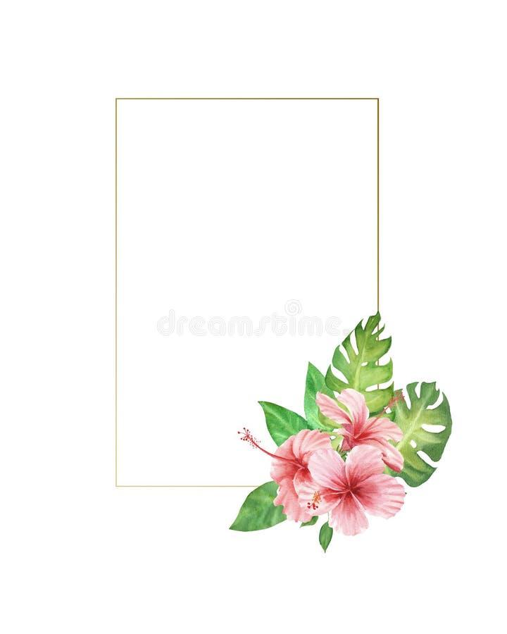 Blommor och sidor för vattenfärggränsram rosa tropiska monsterasidor och hibiskusbukett vektor illustrationer