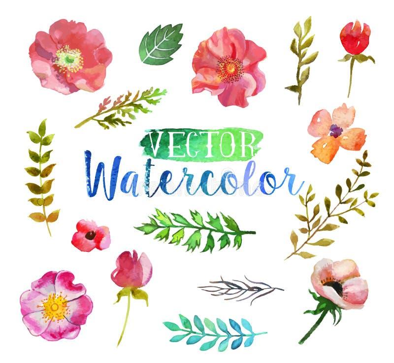 Blommor och sidor för vektorvattenfärgaquarelle stock illustrationer