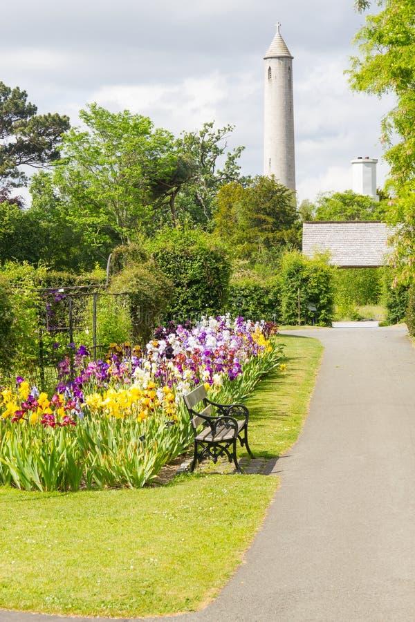 Blommor och torn i botanisk trädgård royaltyfri fotografi