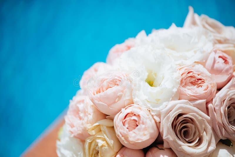 Blommor och vattenpöl royaltyfri bild