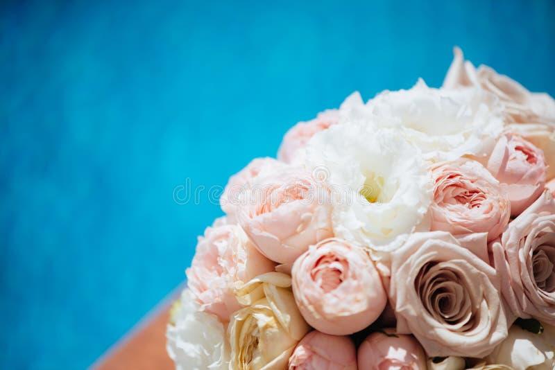 Blommor och vattenp?l royaltyfri foto