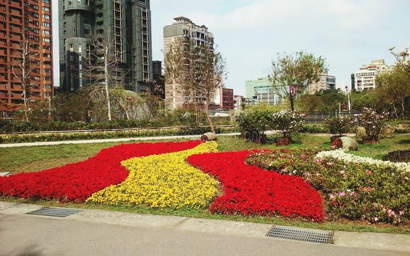 Blommor på DaAn Park arkivfoto