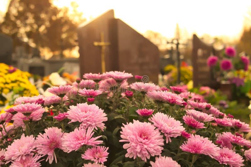 Blommor på en grav på kyrkogården royaltyfri foto