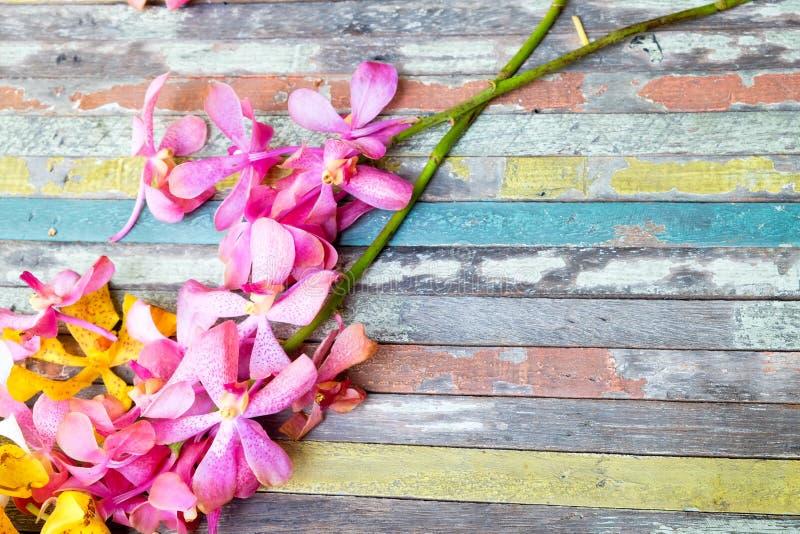 Blommor på färgrikt trä arkivfoto