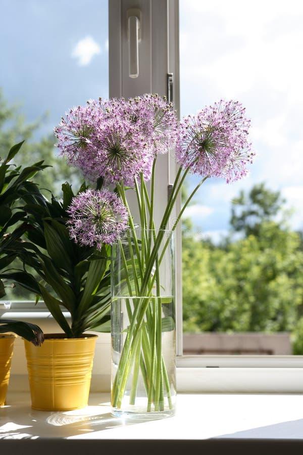 Blommor på fönster-fönsterbräda fotografering för bildbyråer