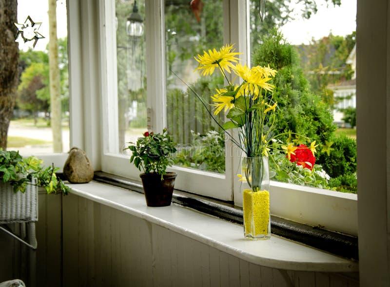 Blommor på fönsterbräda arkivfoton