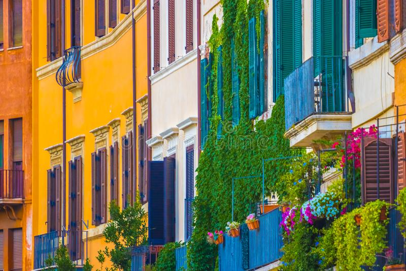Blommor på fasad av det historiska huset på piazza Navona i Rome, royaltyfria bilder