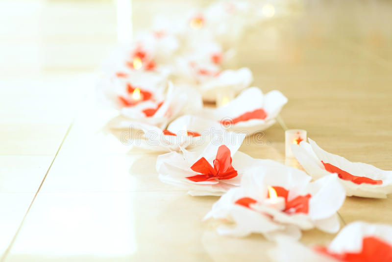 Blommor på golv arkivbild