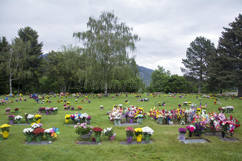 Blommor på Graveside i en kyrkogård med träd i bakgrund royaltyfri fotografi