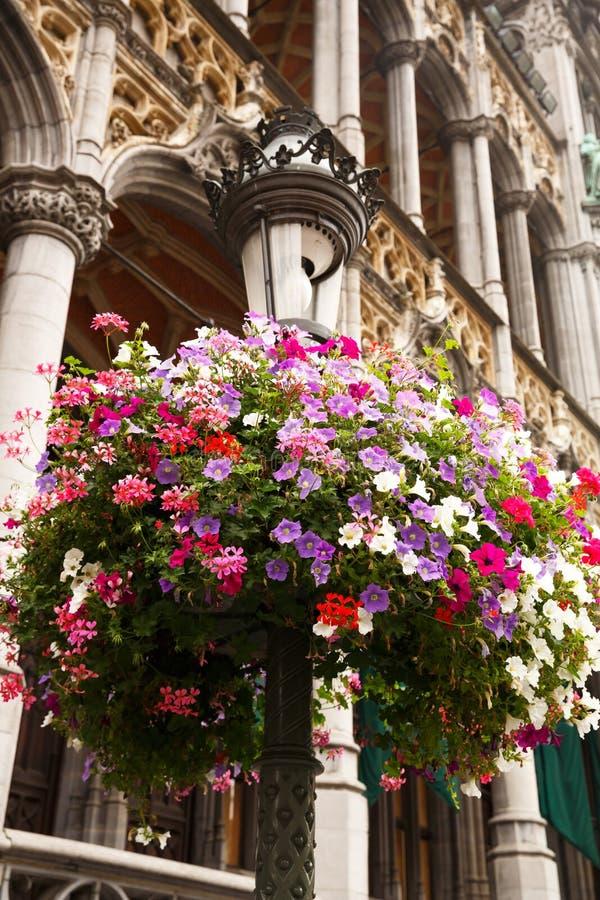 Blommor på museet av staden av Bryssel fotografering för bildbyråer