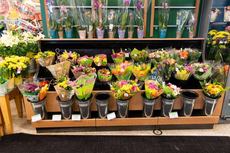 Blommor på skärm på den Publix livsmedelsbutiken fotografering för bildbyråer