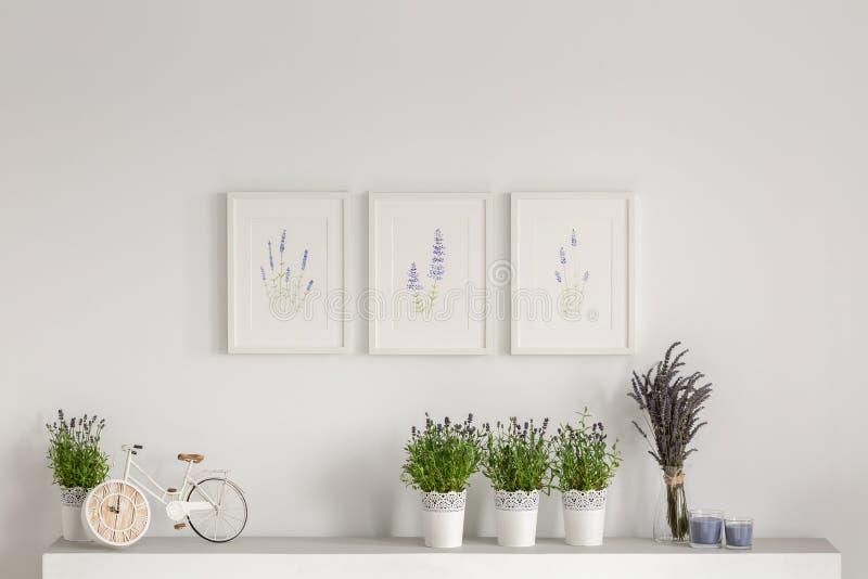 Blommor på skåp mot den vita väggen med affischer i minsta vardagsruminre Verkligt foto fotografering för bildbyråer