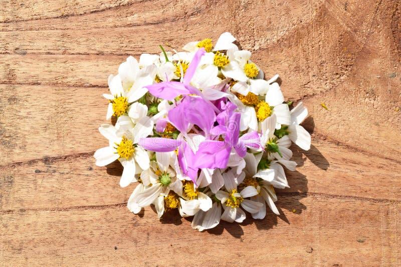 Blommor på träbakgrund royaltyfri fotografi