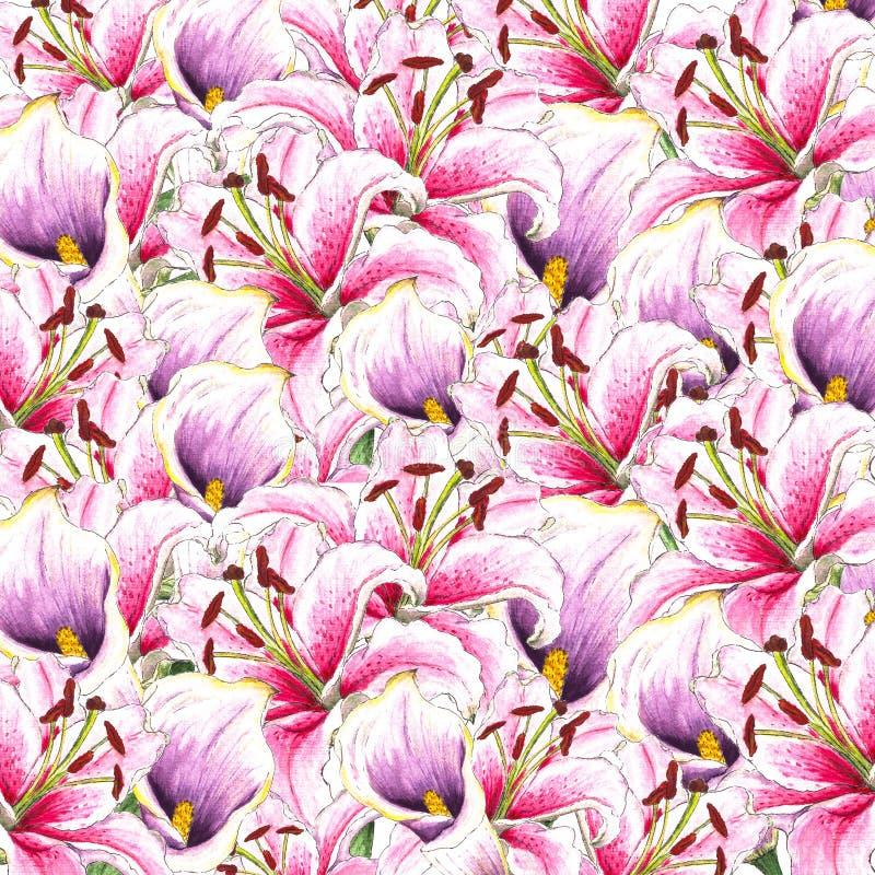 Blommor Vattenfärgcallas och liljor vektor för detaljerad teckning för bakgrund blom- bukettbows figure seamless litet för blomma vektor illustrationer