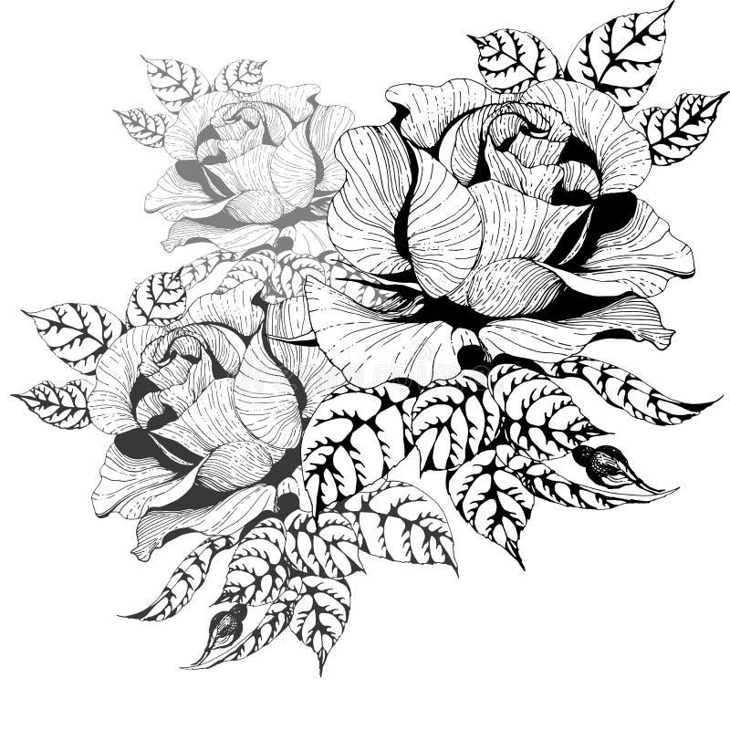 Blommor vektor En filial av rosor med sidor, blommor och knoppar Collage av blommor och sidor royaltyfri illustrationer